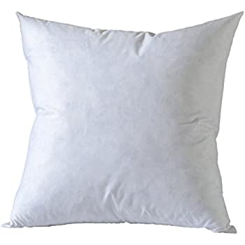 Amazon BASIC HOME 40X40 Square Feather Down Pillow Insert Adorable Down Pillow Inserts 22x22