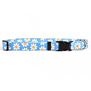 "Yellow Dog Design Blue Daisy Dog Collar Fits Neck 14 To 20"", Medium 1"" Wide"
