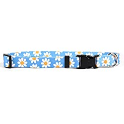 "Yellow Dog Design Blue Daisy Dog Collar 1"" Wide and Fits Neck 18 to 28"", Large"