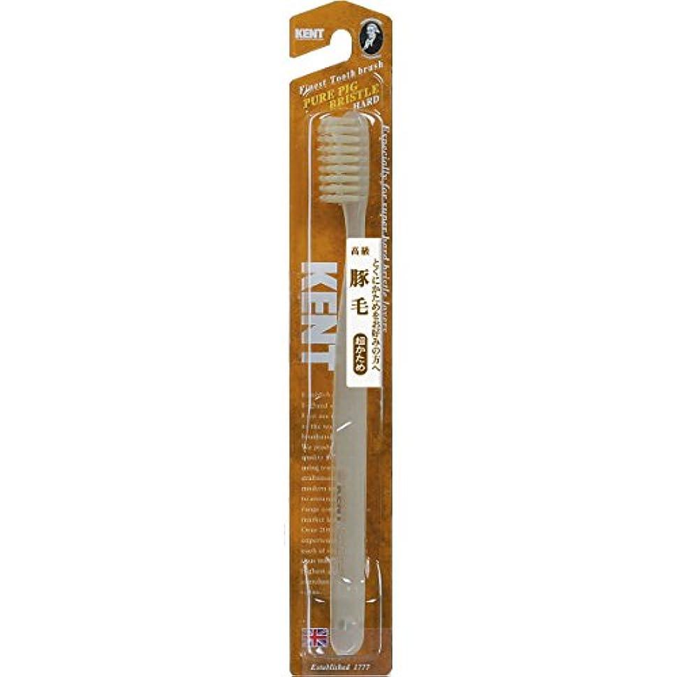 フェードペット奴隷KENT 豚毛歯ブラシ ラージヘッド 超かため KNT-2433 ×5個セット