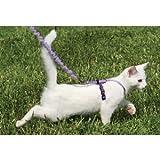 Ppr Lead Cwm Kitty Md Bk