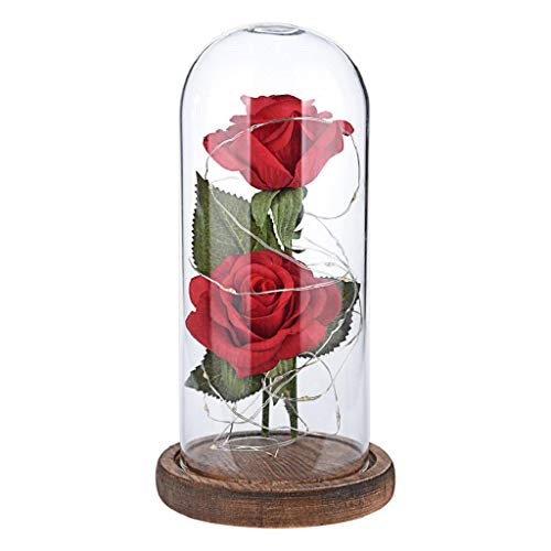 IslandseRomantic Immortal Flower Micro Landscape Rose Simulation Glass Shade Led Llight ()