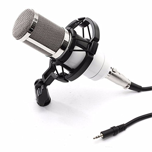 WALLER PAA Condenser Pro Audio BM800 Microphone Sound Studio Dynamic Mic +Shock Mount (White) (Cobra Firefly Costumes)