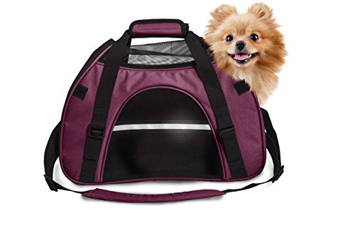Furhaven Pet Large Weather Raspberry