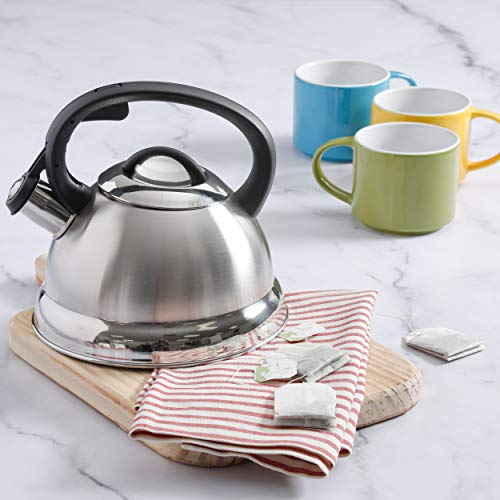 Mr. Coffee 91407.02 Flintshire Stainless Steel Whistling Tea Kettle, 1.75-Quart, Silver by Mr. Coffee (Image #1)
