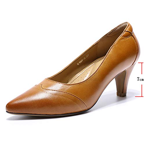 (Mona flying Womens Leather Pumps Dress Shoes High Heels Med Heel Pointed Toe Formal Office Shoes for Women Ladies)