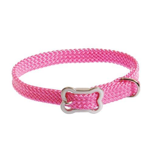 coastal-pet-products-inc-8501-sunburst-collar-with-bone-buckle-10-inch-x-3-8-inch-pink