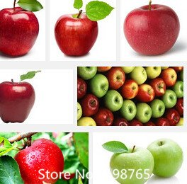 Promotion 30 pcs Bonsai Apple Tree Seeds rare fruit seeds bonsai tree-- America red delicious apple seeds garden for flower pot SVI