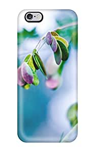 Forever Collectibles Splash Of Leaves Hard Snap-on Iphone 6 Plus Case