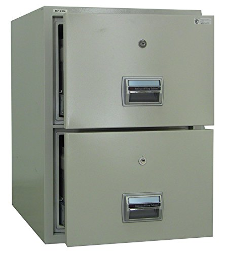 - Steelwater Gun Safes AMFFC-200 Fireproof and Burglary Resistant 2 Drawer File Cabinet