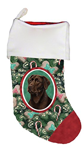 - Best of Breed Chocolate Labrador Dog Breed Christmas Stocking
