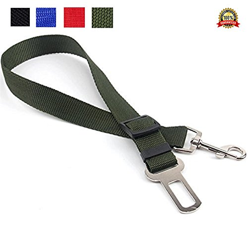 Adjustable Restraint Seatbelts Attachment Connects