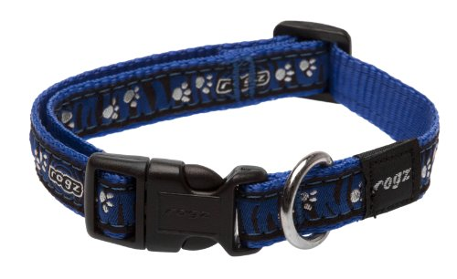 Rogz Fancy Dress Medium 5/8-Inch Scooter Dog Collar, Zebra Paws on Blue Design