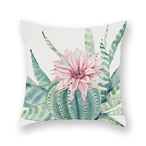Aremazing Summer Succulent Plant Throw Pillow Covers Cactus Prickly Pear Pink Flower Super Soft Throw Pillow Case Cover Home Decorative Cushion Cover for Sofa Couch 18x18 Inch (Prickly Pear Flower)