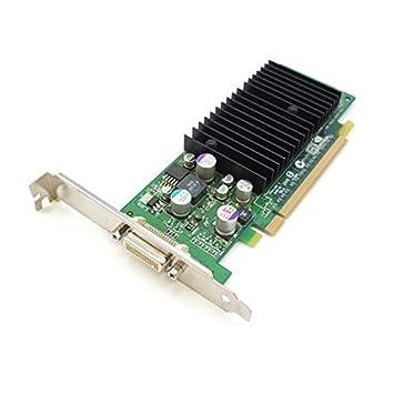 Tarjeta gráfica NVIDIA Quadro NVS 280 PCI-Express 250 mhz 64 ...