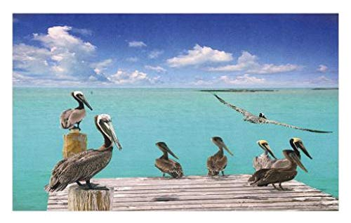 Lunarable Landscape Doormat, Tropical Sea View with Exotic Birds Pelicans Caribbean Beach Tranquil Photo, Decorative Polyester Floor Mat with Non-Skid Backing, 30 W X 18 L Inches, Blue Aqua Blue Birds Door Mat