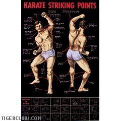 1 X Karate Striking Points Posters by Martial Arts Gear