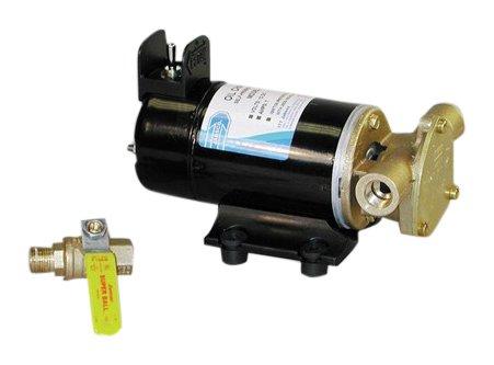 Jabsco 17830-0012 12V Oil Change Pump by Jabsco
