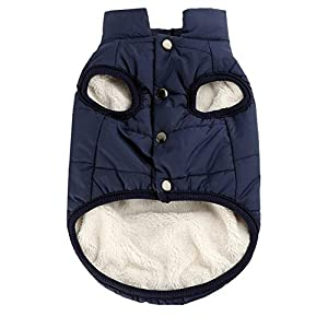 PetPawa Double Layer Fleece Warm Dog Jacket Coat Vest for Puppy Winter Cold Weather Soft Windproof Apparel for Small… Click on image for further info.