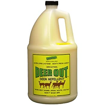 Amazon.com : Deer Out 32oz Concentrate Deer Repellent