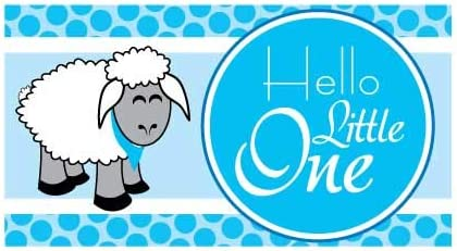 Amazon Com Victorystore Baby Shower Decorations Hello Little One Baby Shower Banner Baby Sheep Waterproof Vinyl Banner Blue 3 Feet Tall Home Kitchen