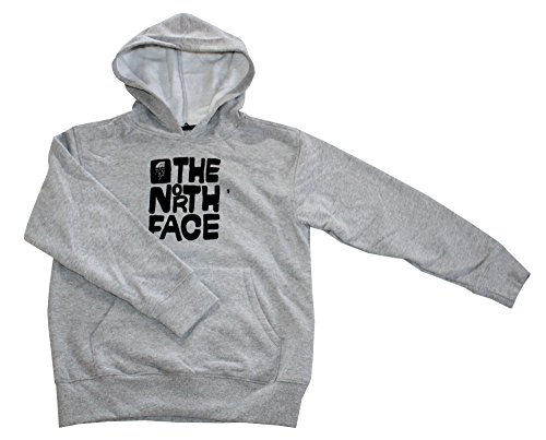 The North Face Youth Boys' LOGOWEAR Pullover Hoodie TNF Light Grey Heather (L ()
