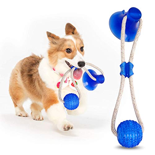 Rainlin Dogs Tough Rubber Teethbrush Chew Toys with Suction Cup, Teeth Cleaning Indestructible Dog Chew Toys for…