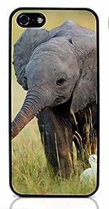 Elephant Cute Hard Case for Apple iPhone 5/5S ( Sugar Skull )