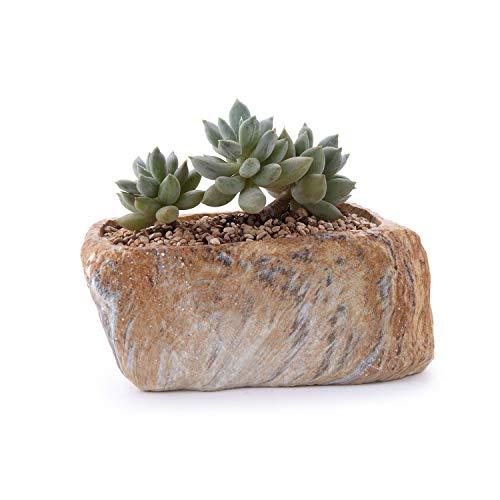 (ART-H Stone Mold Succulent Planter Plant Resin Planter Flowerpot Gardening Resin Bonsai Desk Flower Pot Figure Decor,Type01)