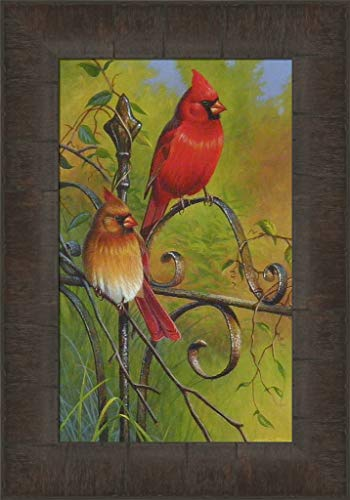Garden Visitors by Cynthie Fisher 11x15 Cardinals Song Birds Framed Art Print Wall Décor ()