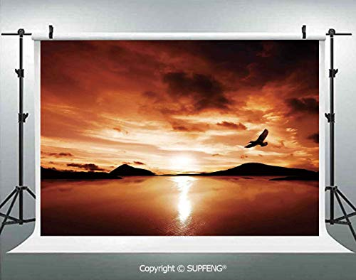 Background A Sea Bird Flies Off into The Amazing Sunset Cloudy Sky Sun Reflection on Surface 3D Backdrops for Interior Decoration Photo Studio Props (Sea Of Love Fly To The Sky)