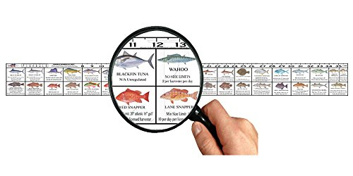 (Predator Marine Florida Saltwater Fish Ruler Decal)