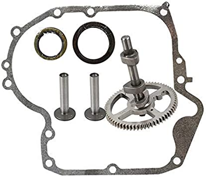 Camshaft With Gasket and Oil Seal For Briggs /& Stratton 793880 Replaces # 793583 792681 791942 795102