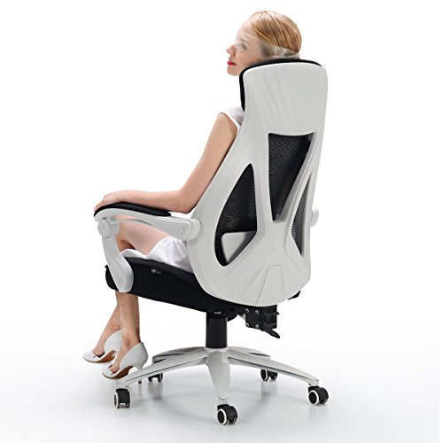 Hbada Ergonomic Office Chair High Back Adjustable Desk