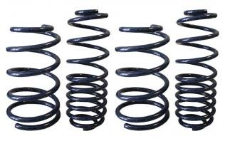 Kits Mustang Body Steeda (Steeda 555-8206 Ultra-Lite Coil Spring Kit for Ford Mustang)