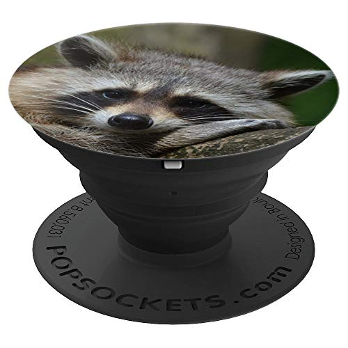 (Sweet Cuddly Raccoon - PopSockets Grip and Stand for Phones and)