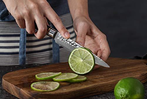 HEZHEN 5-Piece Damascus Kitchen Knife Set, Chef Knife Nakiri Santoku and Utility Knife Hammered Forging 67 Layer Japanese Damascus Steel Professional Chef's Kitchen Knife Ebony Handle - Classic Series by HEZHEN (Image #8)