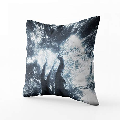HerysTa Decorative ThrowPillowCovers, Home Throw Pillow Case 20X20inch Invisible Zipper Cushion Cases Misty Fest Square Sofa Bed Décor