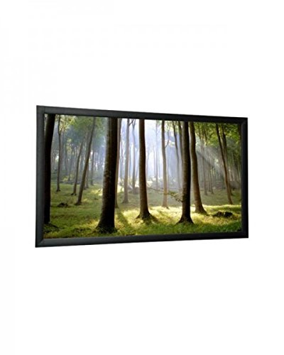 WS-S-CinemaFrame 4:3 225x169 1.4 Gain Diamond