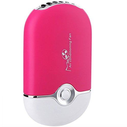Baisidai USB Mini Fan Air Conditioning Blower for Eyelash Extension (Rose)