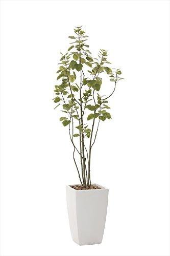 光触媒 光の楽園 人工観葉植物 アーバンブランチツリー1.9m B079NW2CP5
