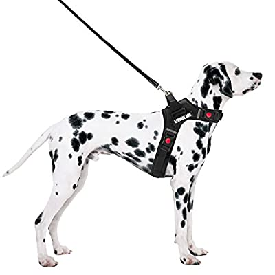 Dog Harness, Aiweam Front Range No Pull Dog Vest Harness with Handle, Outdoor Pet Harness Adjustable Comfortable and Easy Control, Oxford Material Vest for Small Medium Large Dogs