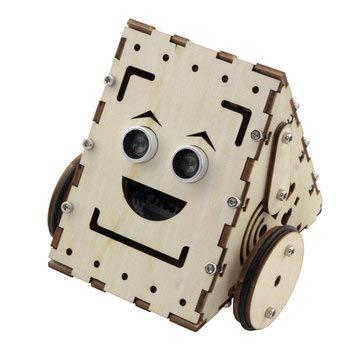Robot R2 Lite Version Kit Compatible - Arduino Compatible SCM & DIY Kits Smart Robot & Solar Panel - 1 x R2 board accessories package