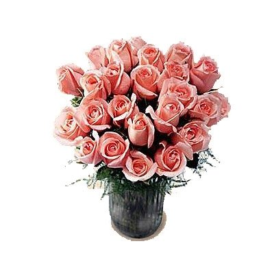 Indian Gift Emporium Cute Natural Red Roses (Bunch of 12)