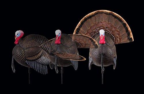 Flambeau Outdoors MD-735 MAD Spin-N-Strut Motion Turkey Decoy by Flambeau Outdoors (Image #7)