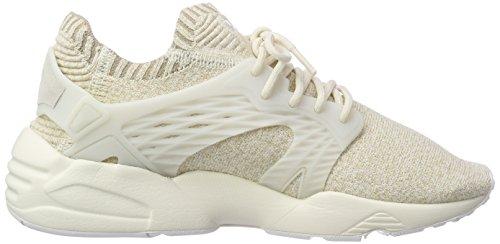 Puma Cage Evoknit Blaze Damen Sneaker wAA10SWfr
