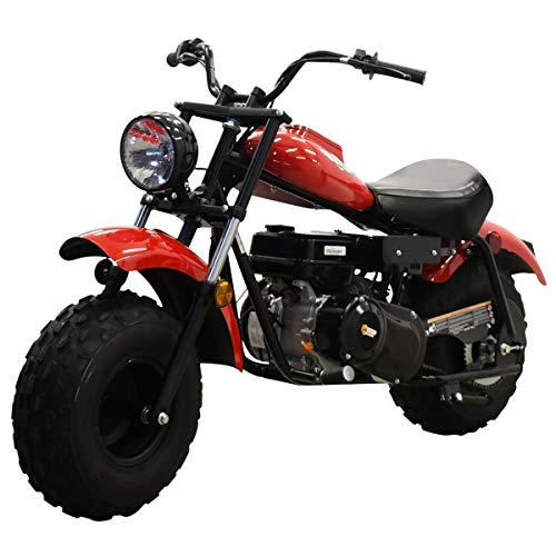 gas powered mini bike - 7