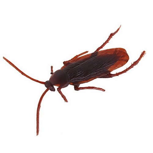 Realistic Rubber Cockroaches 3 Pcs.