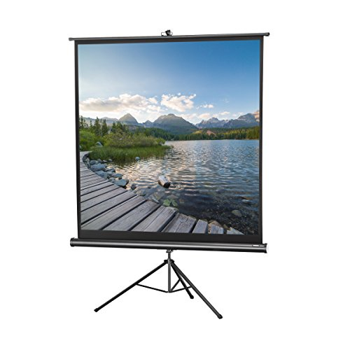 celexon 136'' Tripod Projector Screen Tripod Economy | 96 x 96 inches viewing area | 1:1 format | Black edition | Portable projector screen with tripod stand & carrying handle | Quick & easy setup by Celexon