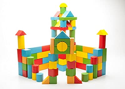 100 Piece Color Wooden Building Blocks Set With Durable Carrying Case For Children